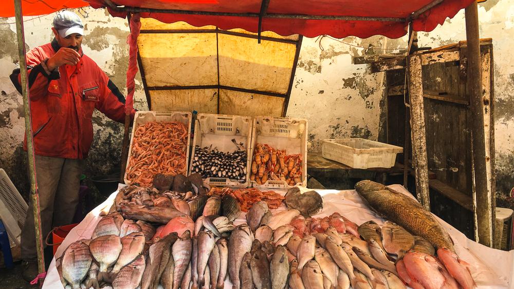 Essaouira, Morocco - Fish Market